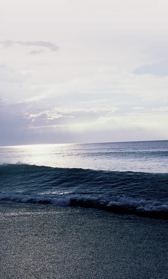jambon-bayonne-ocean